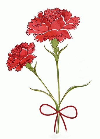 free-vector-watercolor-carnation-flower
